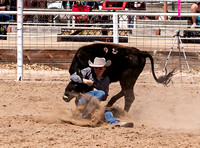 Steer Wrestling Saturday Hill City