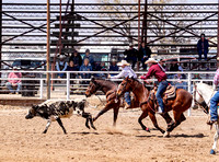 Team Roping Saturday Hill City