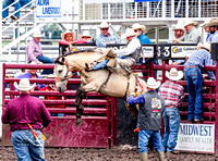 Saddle Bronc Phillipsburg Sunday 2019
