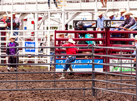 Bull Riding Phillipsburg Sunday 2019